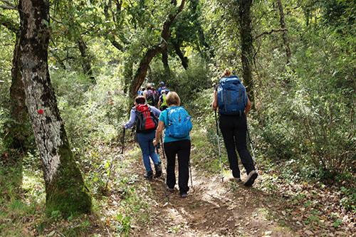 escursione-bosco-ficuzza