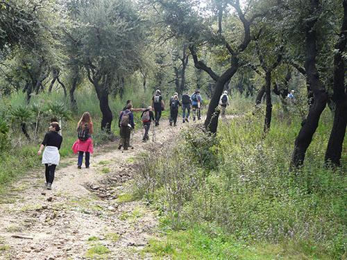Escursione Cai sughereta Angimbè