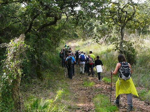 Escursione Cai bosco Angimbè
