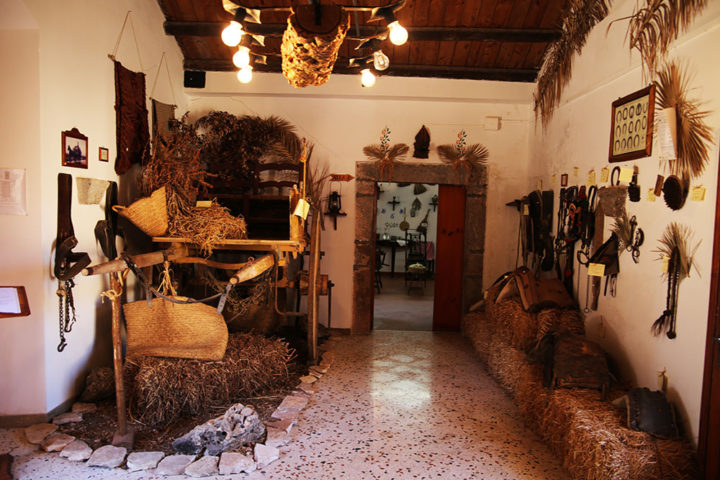 Museo agroforestale - interno