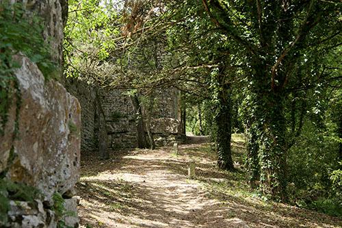 Sentiero delle mura elimo-puniche
