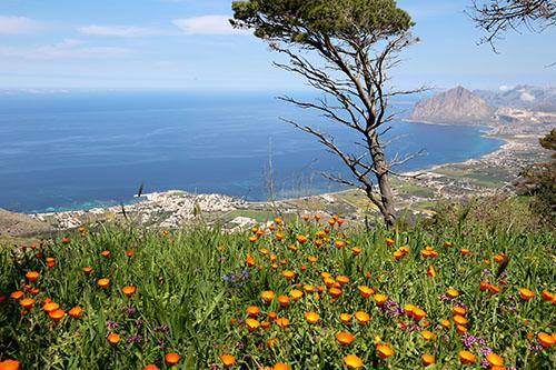 Panorama sul golfo di Bonagia