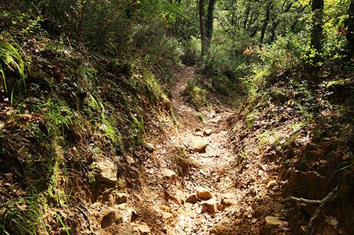sentiero_canyon
