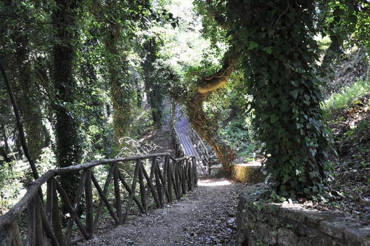 Il sentiero delle mura elimo-puniche nei pressi della Matrice