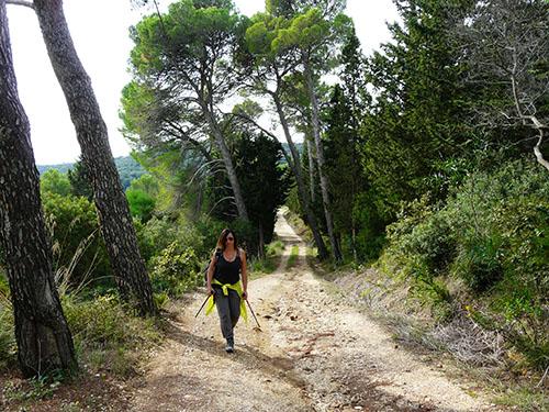 Trekking Bosco Angimbè