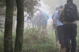 trekking_bosco_erice